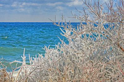 Winter Beach Art Print by Michael Allen