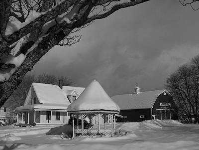 Winter Beauty Original by Gene Cyr