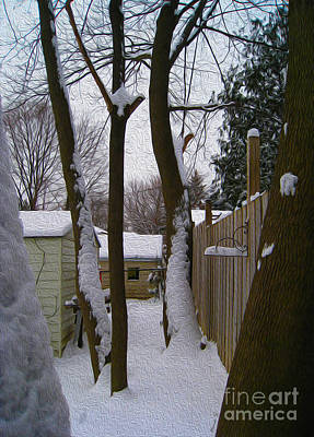 Photograph - Winter Behind The Garden Sheds by Nina Silver