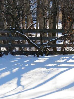 Photograph - Winter Below Zero 1 by Judy Via-Wolff