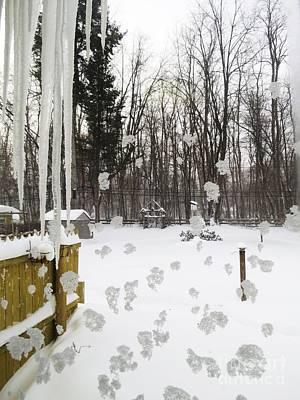 Photograph - Winter Below Zero 2 by Judy Via-Wolff