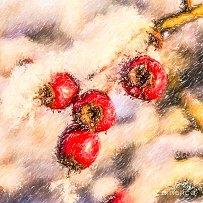 Digital Art - Winter Berries by Liz Leyden