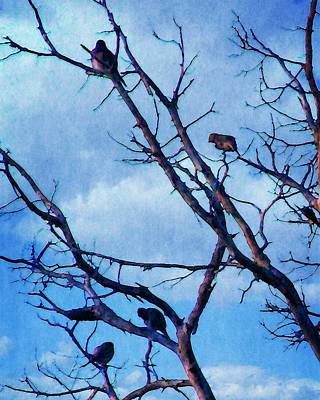 Photograph - Winter Birds by Timothy Bulone