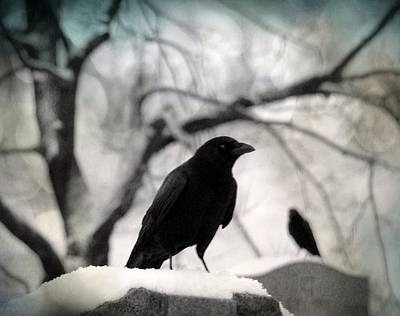 Birds In Graveyard Photograph - Winter Blackbirds by Gothicrow Images