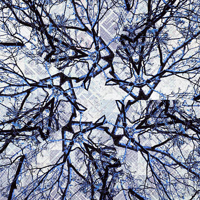 Digital Art - Winter Blue Kaleidoscope 2 by Shawna Rowe