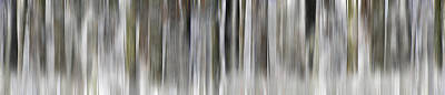 Susann Serfezi Wall Art - Photograph - Winter Rhythm by AugenWerk Susann Serfezi