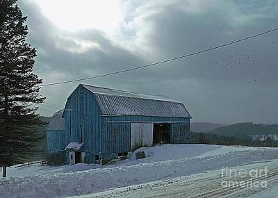 Photograph - Winter Blues by Christian Mattison