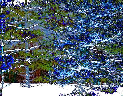Digital Art - Winter Blues by Dale   Ford