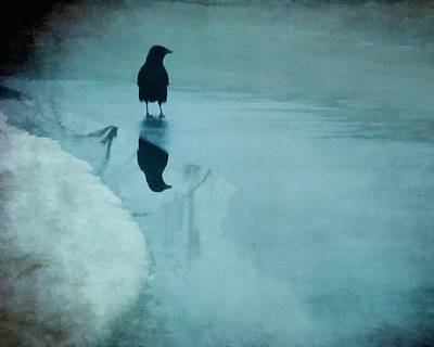Blackbird Mixed Media - Winter Blues by Gothicrow Images