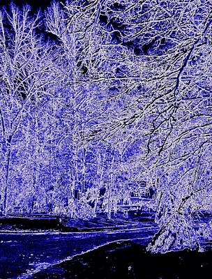 Photograph - Winter Blues by Pamela Hyde Wilson