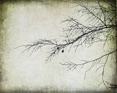 Winter Branch Art Print by Suzanne Barber