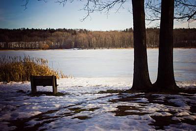 Photograph - Winter Break by Sara Frank