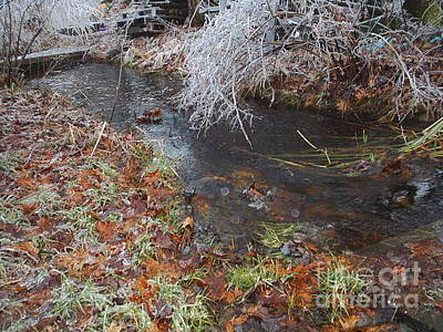 Brrok Photograph - Winter Brook In Maine by Jeannie Atwater Jordan Allen