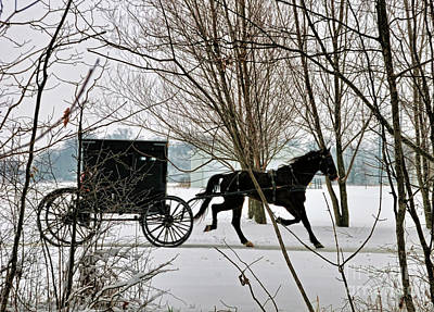 Winter Buggy Art Print