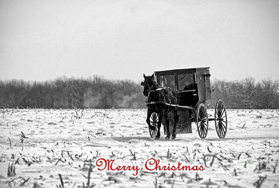 Photograph - Winter Buggy Merry Christmas by David Arment
