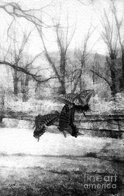 Bw Painting - Winter Butterflies by Mo T