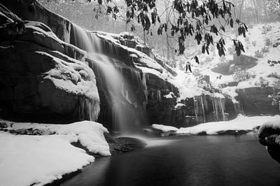 Photograph - Winter Bw by Joye Ardyn Durham