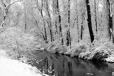 Photograph - Winter By Crum Creek by Deborah  Crew-Johnson