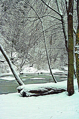 Photograph - Winter By The Creek by Kay Novy