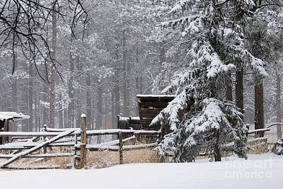 Steven Krull Royalty-Free and Rights-Managed Images - Winter Cabin by Steven Krull