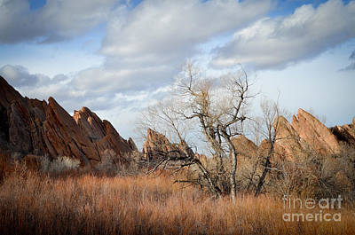 Photograph - Winter Clouds And Rocks by Cheryl McClure