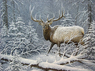 Snow Covered Pine Trees Painting - Winter Coat by Mike Stinnett