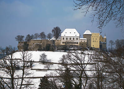 Abstract Trees Mandy Budan - Winter Collection - Lenzburg Castle in the Snow by Michael Brewer