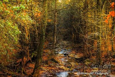 Photograph - Winter Color by Larry McMahon