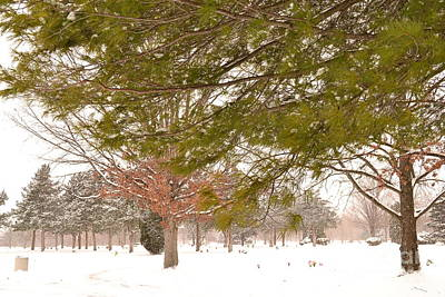Indiana Photograph - Winter Colored Landscape by Amy Lucid