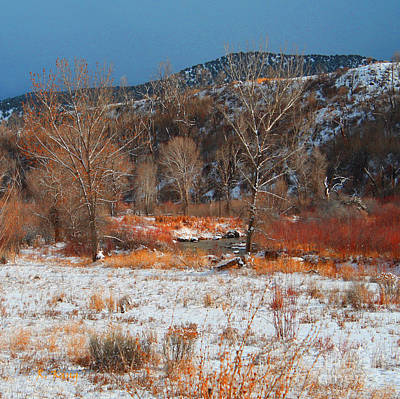 Photograph - Winter Colors by Roena King