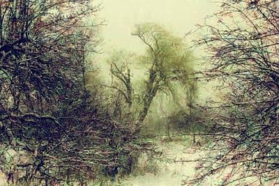 Winter Colours Art Print