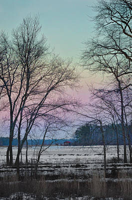 Photograph - Winter Cranberry Bog #1 by Beth Sawickie