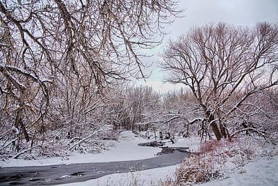 Photograph - Winter Creek by James BO Insogna