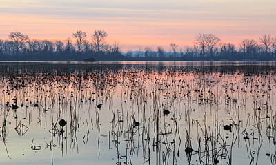 Photograph - Winter Dawn At Horseshoe Lake by Scott Rackers