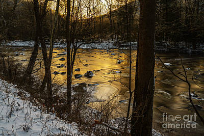 Williams River Scenic Backway Photograph - Winter Dawn At Zero  by Thomas R Fletcher