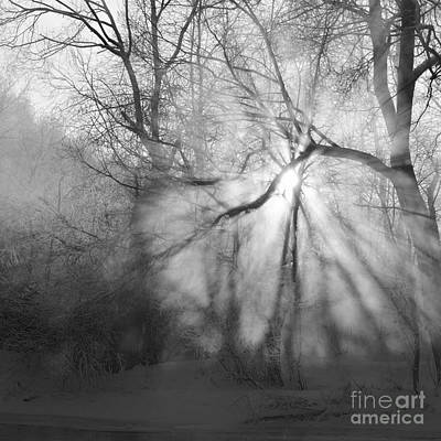 Photograph - Winter Dawn Greyscale by Paul Davenport