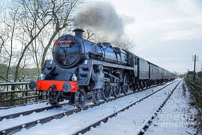 Photograph - Winter Day At Butterley by David Birchall