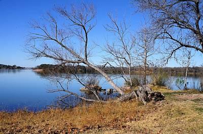 Winter Day At The Lake Original