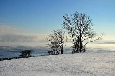 Art Print featuring the photograph Winter Day by Randi Grace Nilsberg