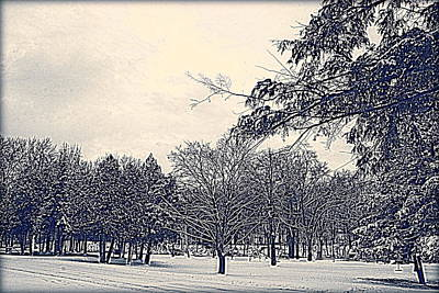 Photograph - Winter Days by Kay Novy