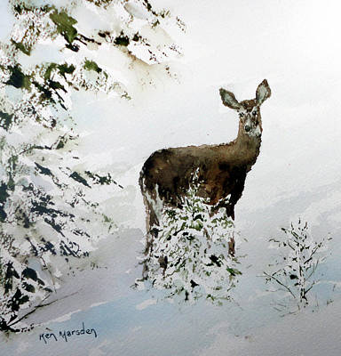 Painting - Winter Deer by Ken Marsden