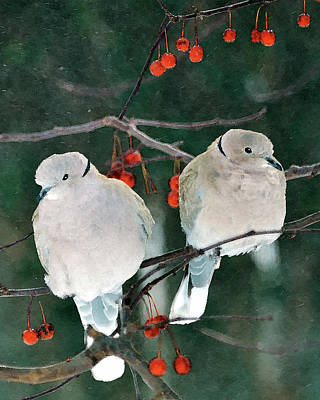Collar Digital Art - Winter Doves by Betty LaRue