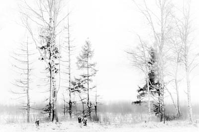 Winter Drawing Print by Jenny Rainbow