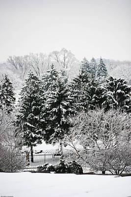 Photograph - Winter Dream by Allan Millora