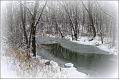 Photograph - Winter Dreams by Kay Novy