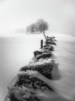Winter Dress Art Print