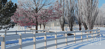 Painting - Winter Drive Digital Painting by Robyn Saunders