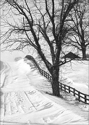 Daviess County Photograph - Winter Driveway by Wendell Thompson