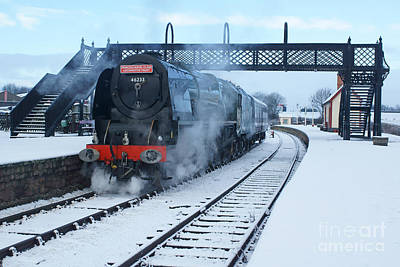 Photograph - Winter Duchess by David Birchall