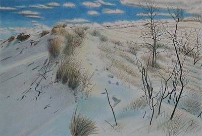 Indiana Landscapes Drawing - Winter Dune by Scott Kingery